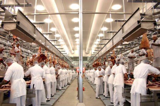 Germania interzice  angajarea prin intermediari